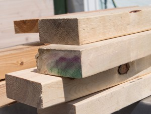 Which Wood Should You Use?  Pressure Differences And Untreated Lumber