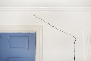 Replacing Mold-Damaged Drywall